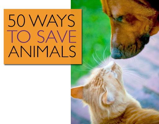 50 Ways to Save Animals
