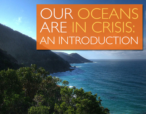 Our Oceans are in Crisis: an Introduction