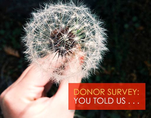 blog_title_image_donor_survey_2015