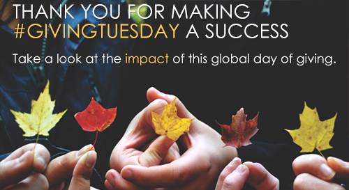 email_promo_2016_giving_tuesday_thankyou_nobutton