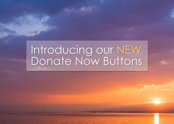 blog_npo_title_image_new_donate_now_buttons